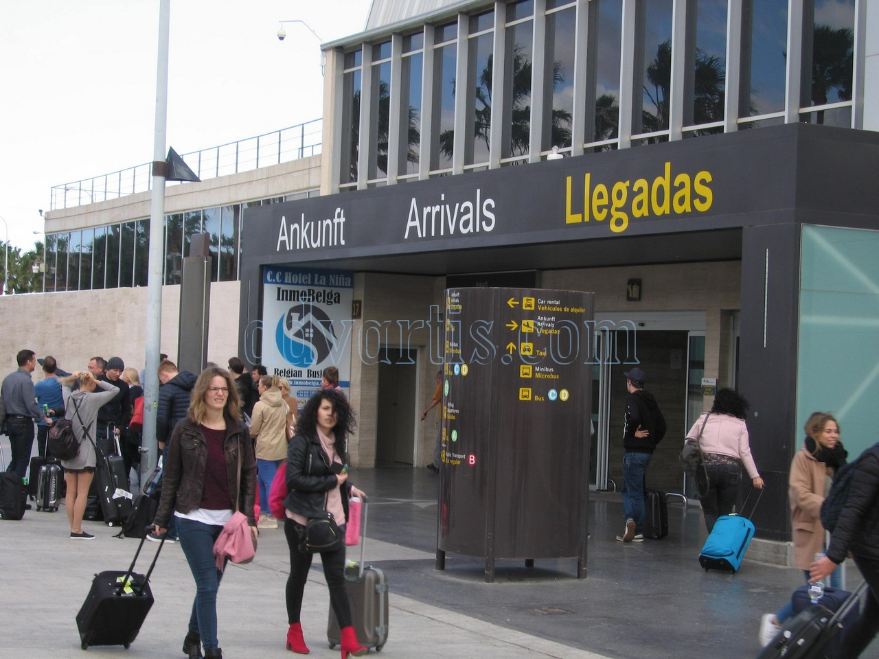 Tenerife south airport Arrivals